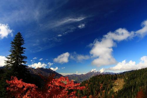 Долина Красной Поляны