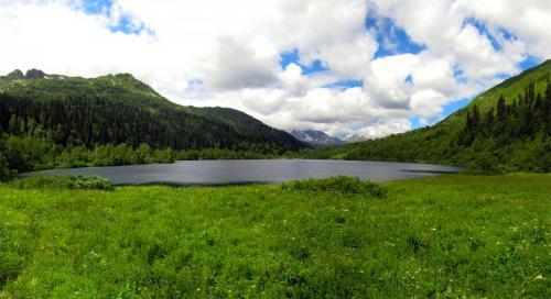 IMG_5523 Panorama