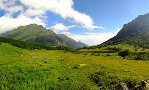 IMG_5945 Panorama
