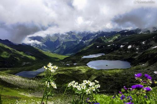 Цветы пятиозерья Загедана