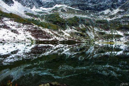 Воды Мзы