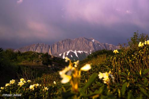 Походы в горы Сочи. Фишт. Хуко