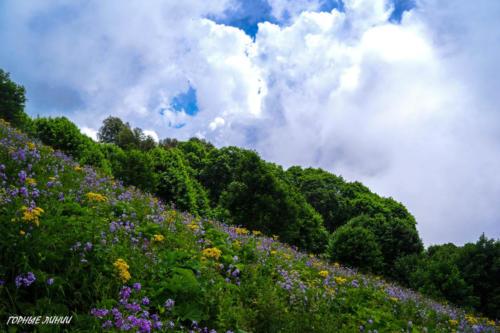 Походы в горы Сочи. Аибга