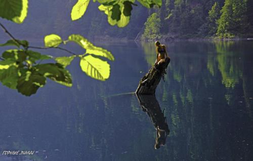 Воды малой Рицы